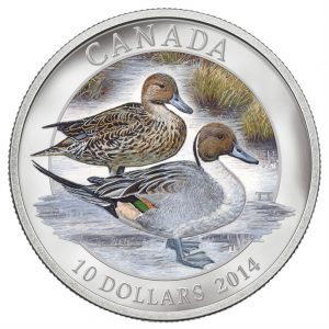 $10 - 2014 Silver Pintail Duck .9999 Fine Silver.